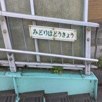 青井/綾瀬 みどりほどうきょう
