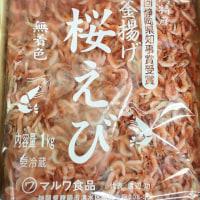 桜海老 1㎏ マルワ食品