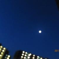 今朝の空は美しい~そして月も見えてました