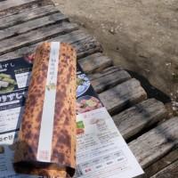 奈良 平城京跡地からのお花見チャリ旅