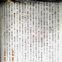 丹生都比売神社  2014.09.18     Archives