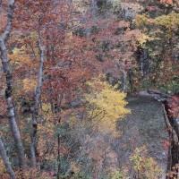奥胎内ヒュッテからの渓谷