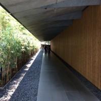 街ナカみどり   根津美術館の有名な園路