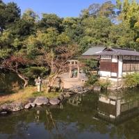 京都散策「厳島神社」京都府京都市上京区、京都御苑内にある神社。堺町御門の西側、九条池の中島に鎮座し、「池の弁天さん」と称される