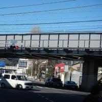 BRM219ランドヌ東京200真鶴に行ってきましたでw