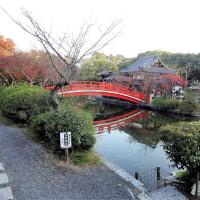 神泉苑  (京都、二条城南)