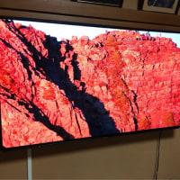 新感覚テレビに感動。