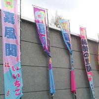 阪神淡路の 大震災の あの日に生まれて 関取に