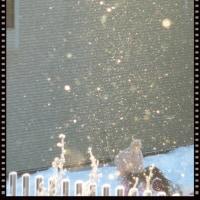 大寒の朝は、冷やされて霧氷とダイヤモンドダスト?!