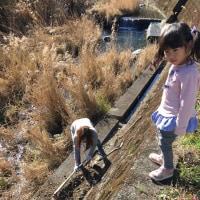 木浦鉱山水路の災害復旧