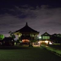 興福寺五重塔と猿沢池とのライトアップ