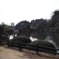 #075 -'17.    新宿御苑(3月25日の散歩)(書きかけです。)