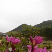 5月16日(火)のえびの高原