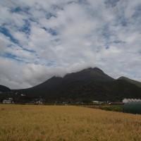田園風景と由布岳