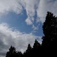 11月最後の週末 11月26日(土)晴れのち曇り