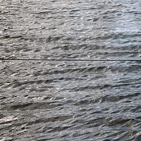 波の上をすべる