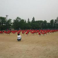 中学校の運動会に行ってきました。