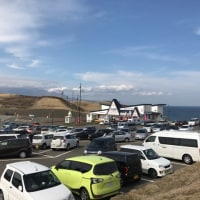 久しぶりに襟裳岬の遊歩道を突端まで歩いてみました。2017.4/29