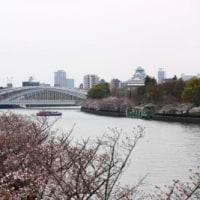 五分咲きの大川端で桜+323系撮影