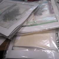 花保管袋の整理(押し花)