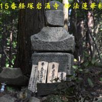 2017/05/29 岩湧の森散策