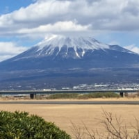 富士山! 海! 静岡遠征