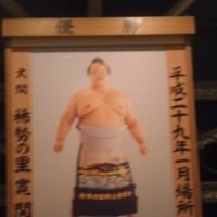 5月23日大相撲観戦