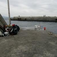 初島離れ堤防 3月12日 日曜日 大潮