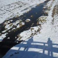 1月17日(火)雪道のウオーキング