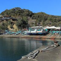 新勝浦漁港