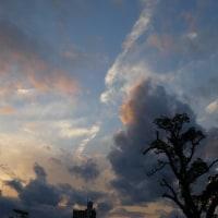 2月26日(日曜日)「空と雲」(てまりさん)