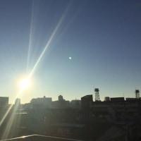 朝の陽光が気持ちいいですね。(^o^)(^o^)