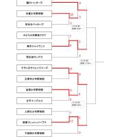 2012年 新人戦 (途中経過)