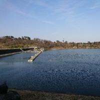 鮎川湖に行ってきた。やっぱり下手です。