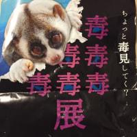 猛毒展   HEP FIVE