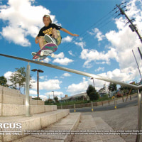 DORCUS 2014��FALL /��WINTER COLLECTION
