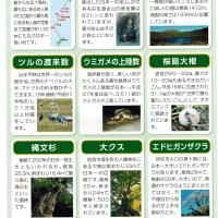 いっぱいある鹿児島の日本一/鹿児島の話題・情報