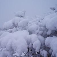 雪の赤城(鍋割山)