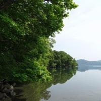 和琴半島を歩いて来ました! Wakoto nature trail