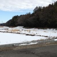 3月前半は寒く、春の訪れは遅め