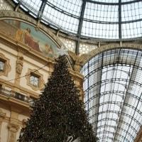 スワロフスキーのクリスマスツリー…♪