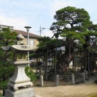 神ってる神社にお参りしてきました。