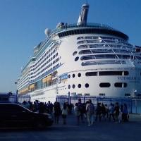 大きな船です。