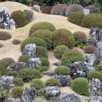 ぶらり旅・龍潭寺③庭園(静岡県浜松市北区)