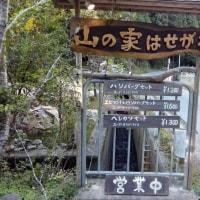 京都、山の家はせがわさんでランチ~♪