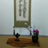 memo ∞「たまたま出くわしましたお言葉/禅のこころ-道元禅師の和歌」