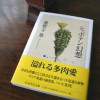 新しいコケの本『コケの生物学』をやっと手に取れた幸せ