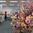 札幌どさんこワイドにて粘土のお花の展示会告知、放映されました〜!!