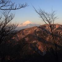 丹沢の富士山 冬の大山へ 平成29年1月22日