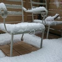 ウワー雪だ